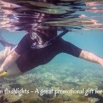 Submersible Flashlights – Product Spotlight